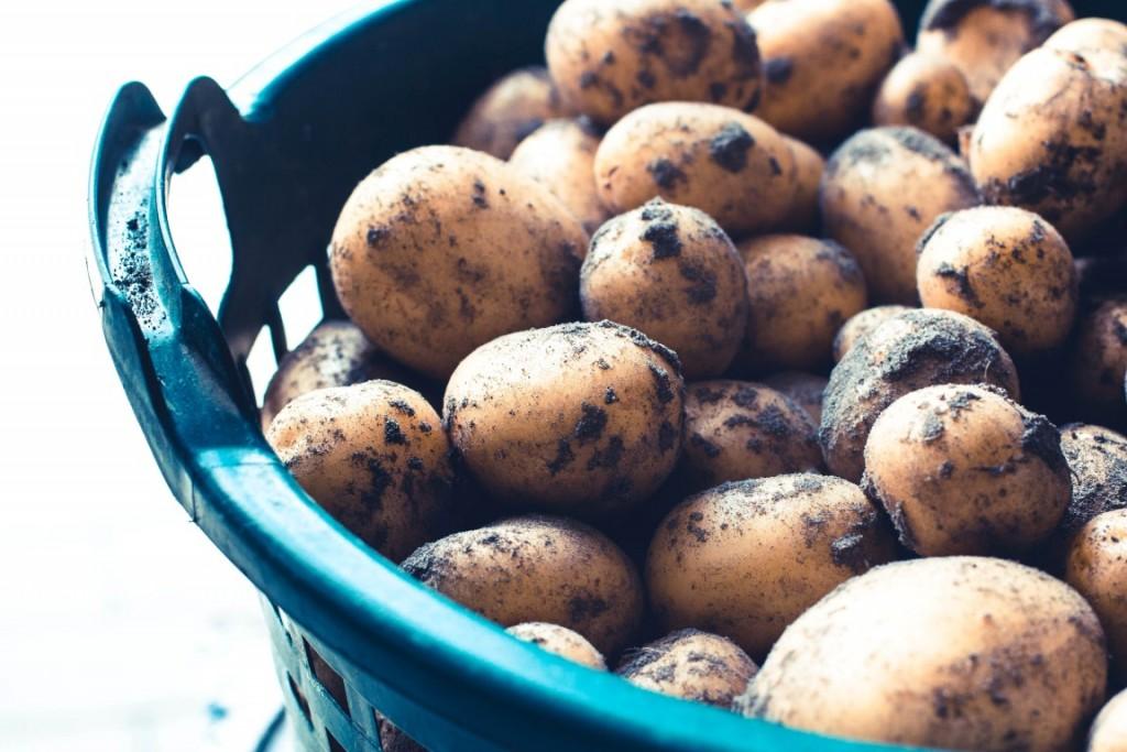 Rezept-Hasselback-Kartoffeln-aus-dem-Backofen-10