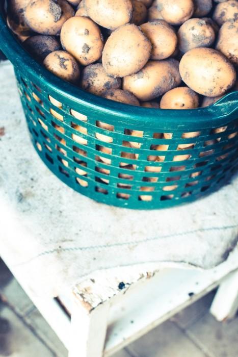 Rezept-Hasselback-Kartoffeln-aus-dem-Backofen-11