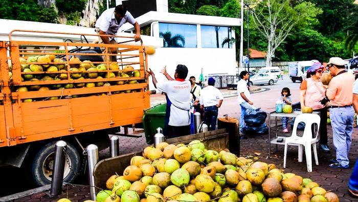 Kokosnuss-Exotische-Früchte-in-Thailand-18-Sorten-die-man-probieren-muss-64