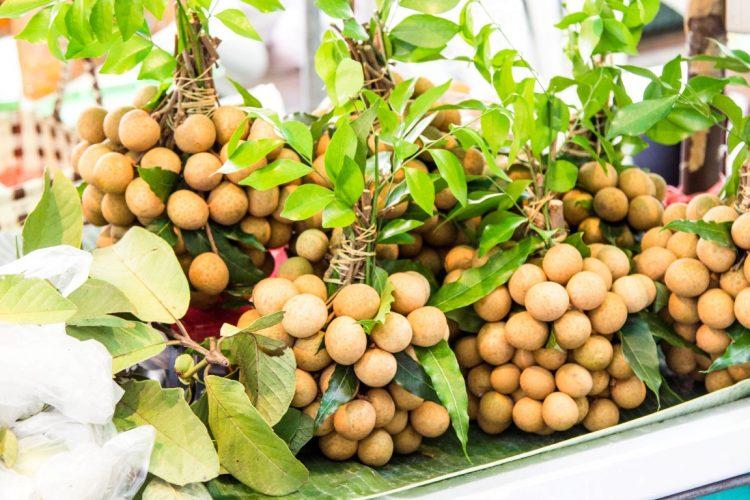 Longan-Exotische-Früchte-in-Thailand-18-Sorten-die-man-probieren-muss-84
