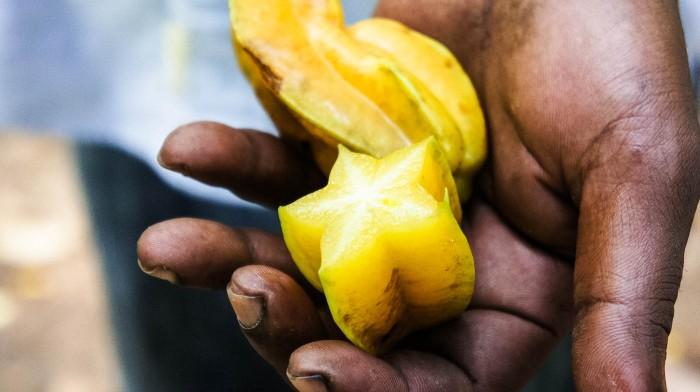 Sternfrucht-Exotische-Früchte-in-Thailand-18-Sorten-die-man-probieren-muss-55